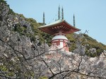 薬王寺の瑜祇塔(ゆぎとう)